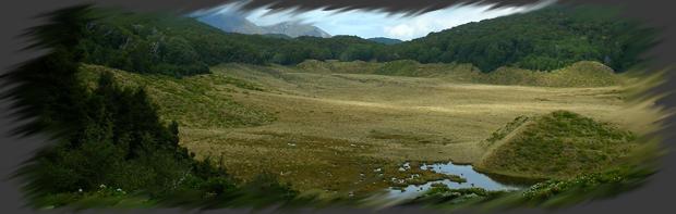 Les Plaines