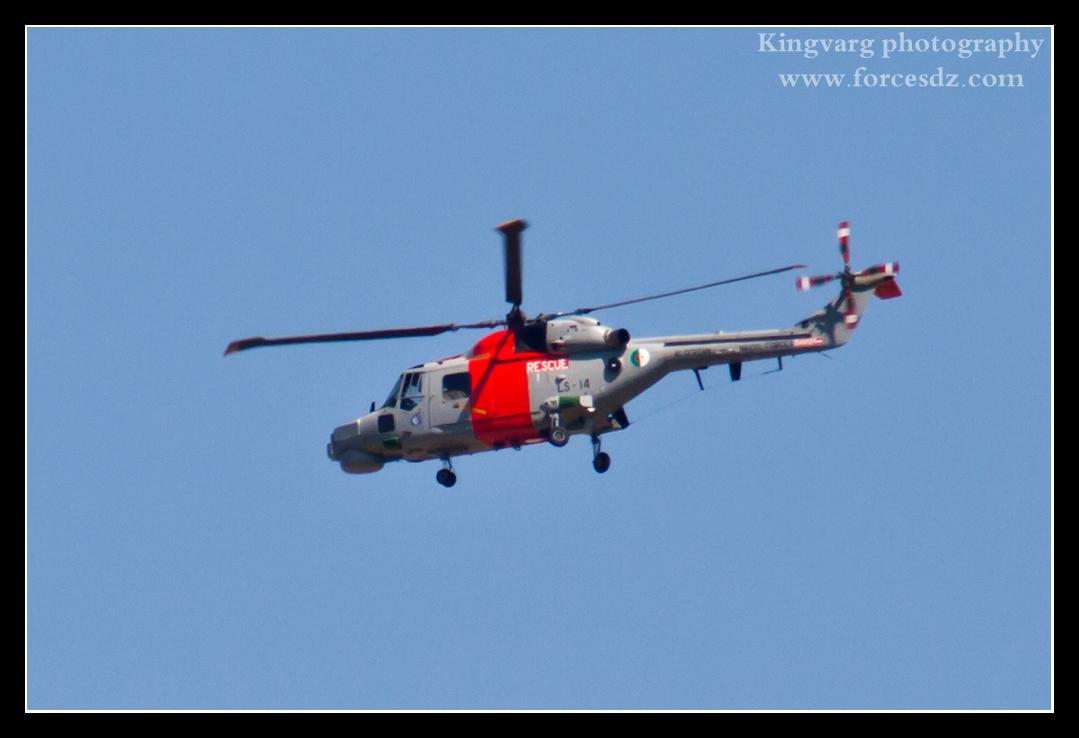 المروحيات التي تمتلكها الجزائر 918237LS14