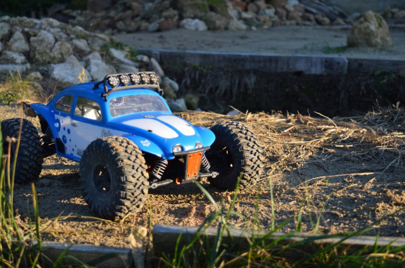 My Axial EXO Terra Buggy - Page 5 918671DSC0388
