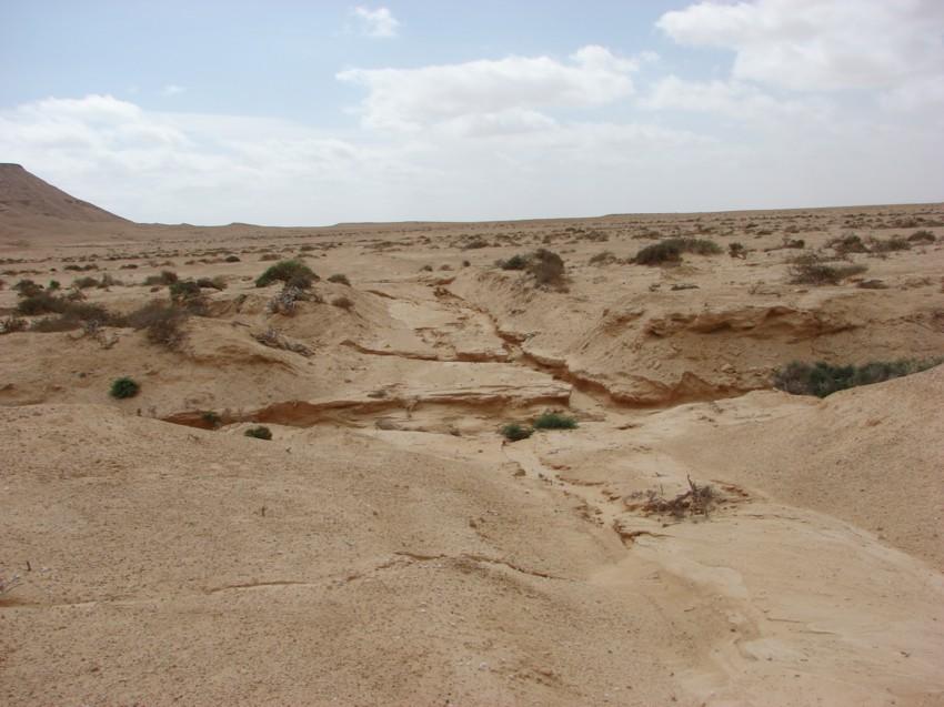 retour maroc 2012 - Page 2 923018005