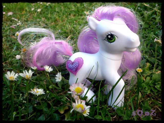 Les petits poneys de sOoZ - G1 à G5 923309P1140843