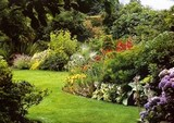 Le grand jardin