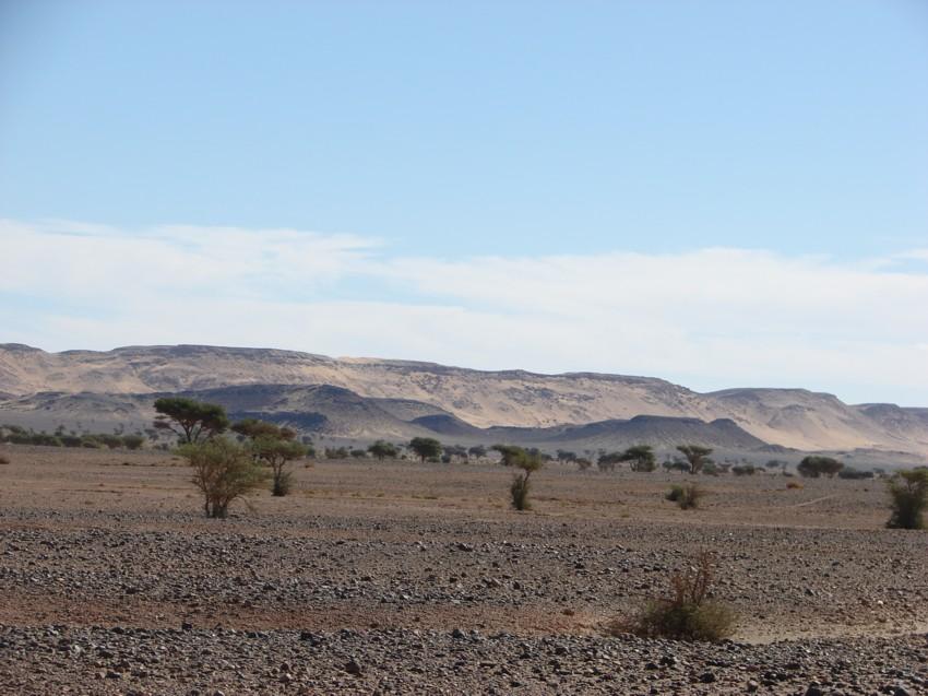 retour maroc 2012 - Page 2 929021165