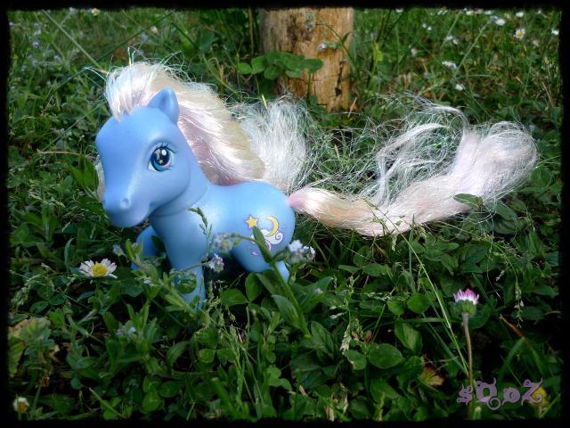 Les petits poneys de sOoZ - G1 à G5 929216P1140845