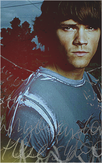 Jared Padalecki 932986Jared7
