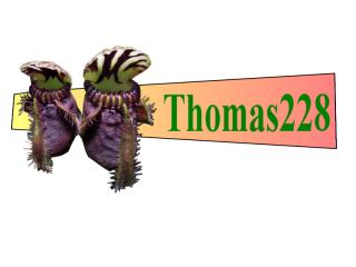 recherche âme charitable pour boutures cephalotus (trouvé) 935631signature