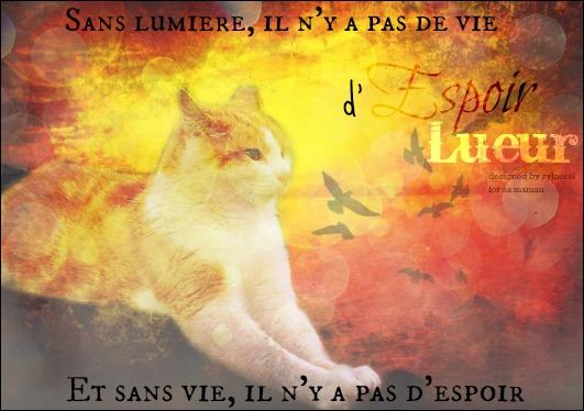F.C.L. Atelier ~  [ Fleury [ABSENTE]  Chaty [PRÉSENTE] Luny [PRÉSENTE]] - Page 5 937458lulusignacadeauanniv