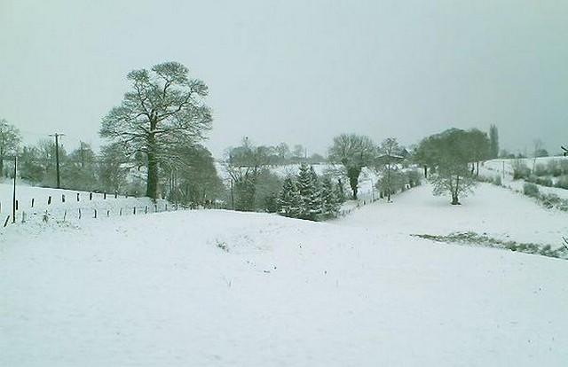 Mercredi 06 janvier 2010 - (Neige à Pont Farcy - 7 à 10 cm) 940320campeauxneige5