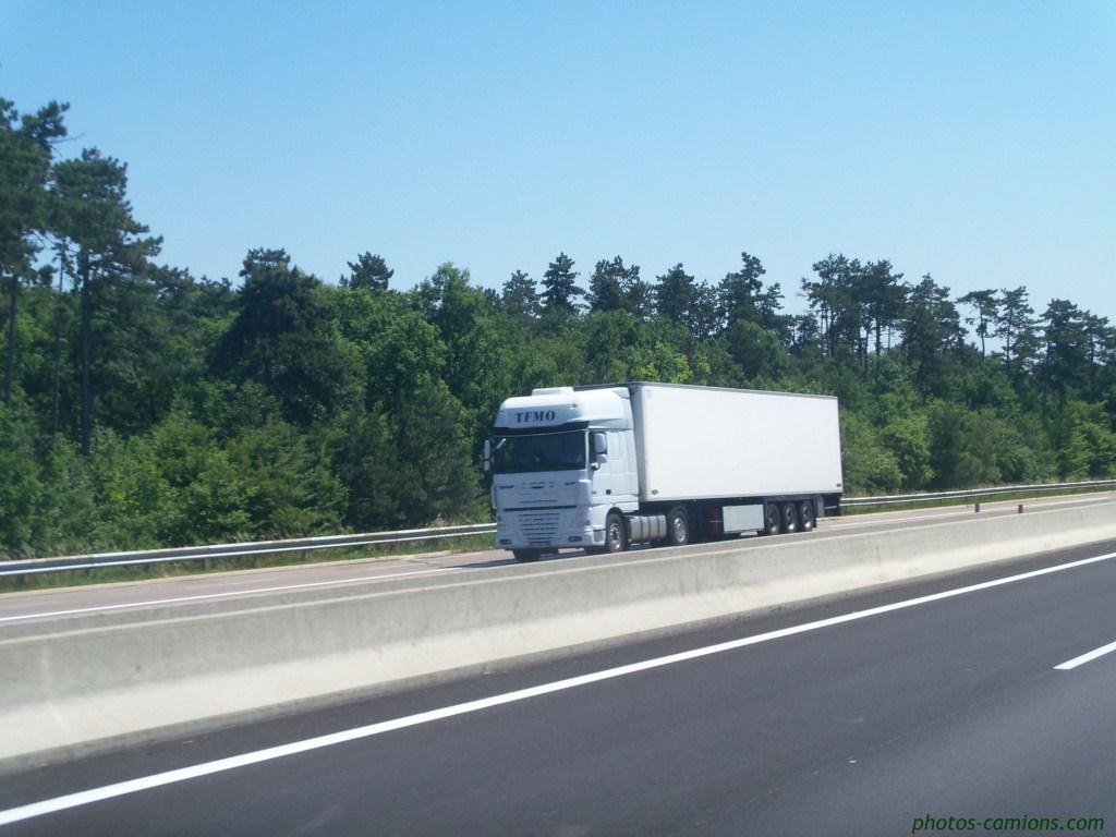 TFMO. (Transports Frigorifiques du Mont d'Or)(Lissieu, 69) 942603photoscamions27VI1135Copier