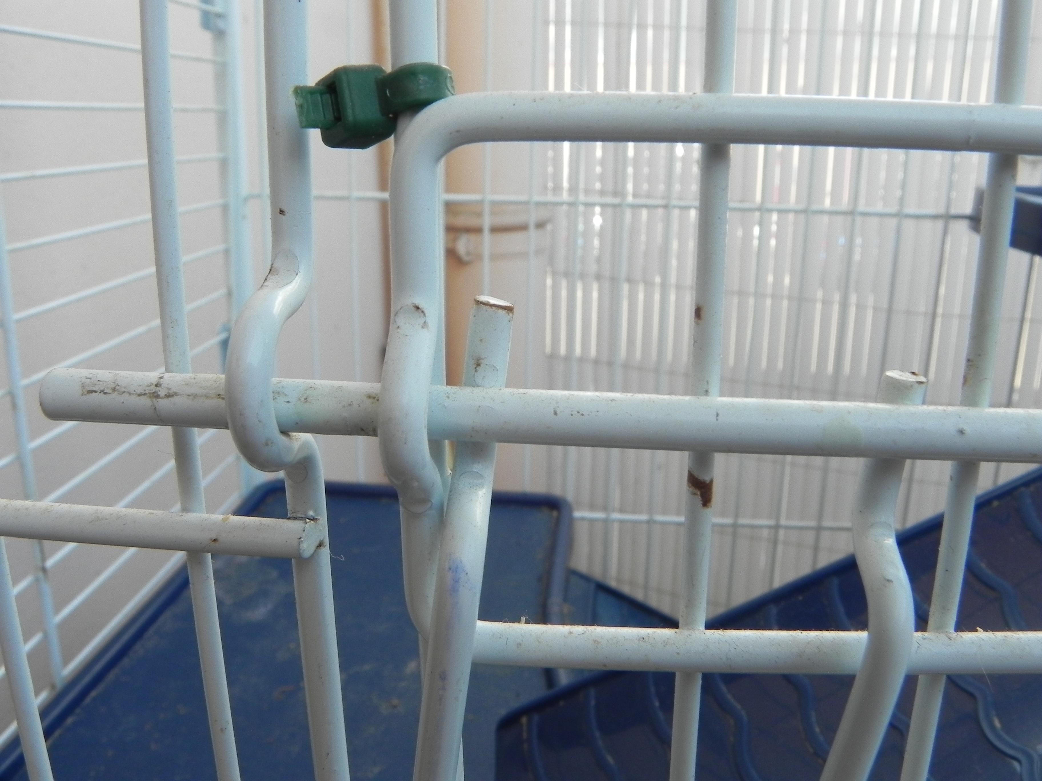 Vends Cage Tower (89) 942671DSCN1671