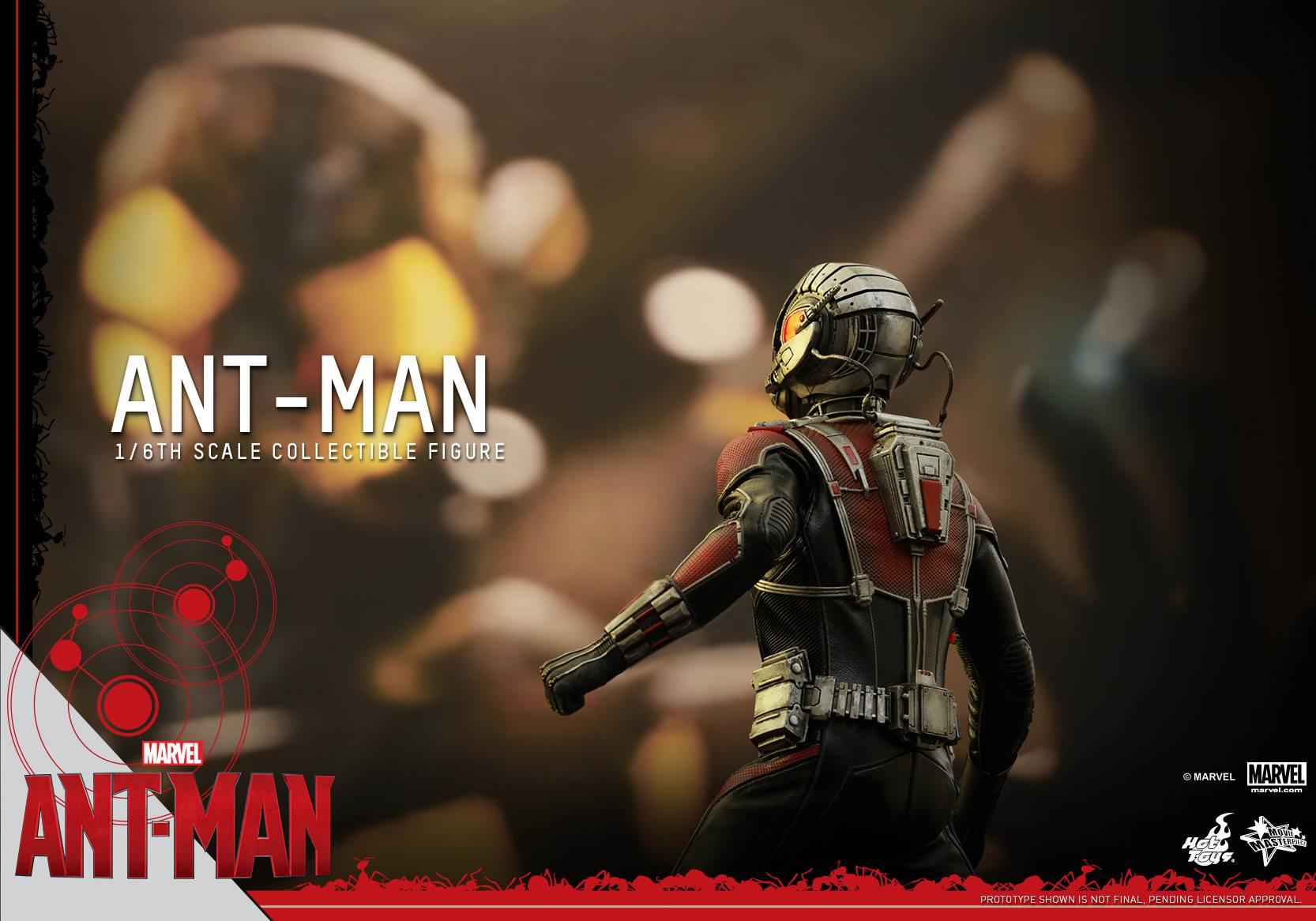 HOT TOYS - Ant-Man - Ant-Man 946543116