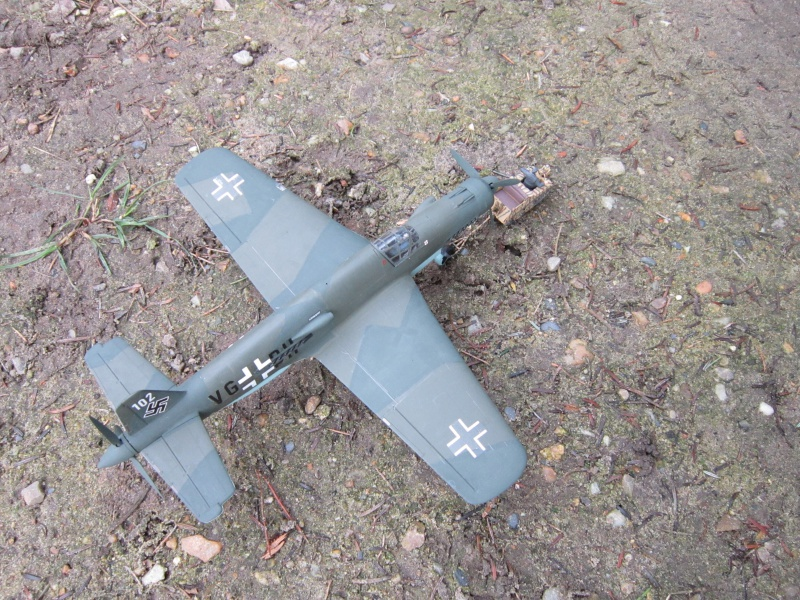 Dornier 335 A PFEIL de Tamiya au 1/48 par Pascal 94 947732IMG4152