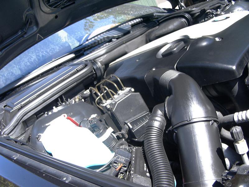 [BMW 530 d E39] Renaissance d'un Cosmos Schwarz Metallic 953492P1000474