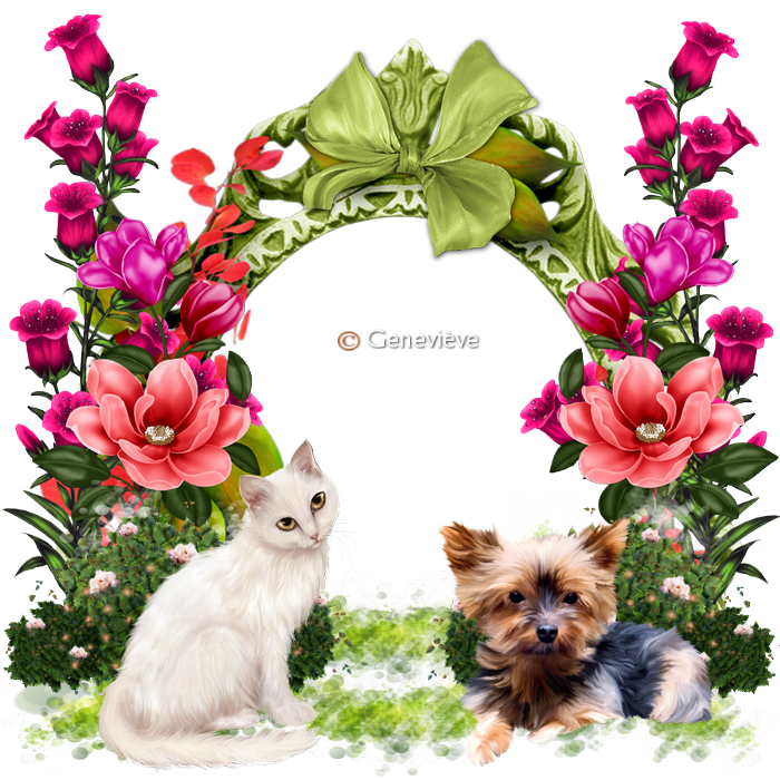 clusters 08 953546chienetchat