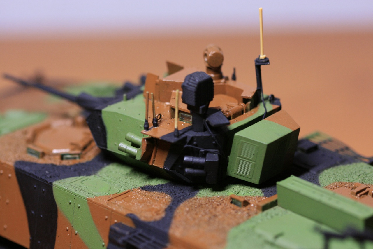 [1/35°] Guerre Occident-Iran, combat de rues quelque part en Iran 955623MG9574