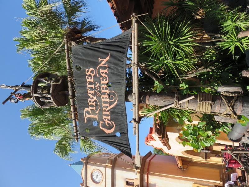 Walt Disney World + Universal Studios + Sea World + Busch Gardens Summer 2014 - Page 4 956695IMG0802