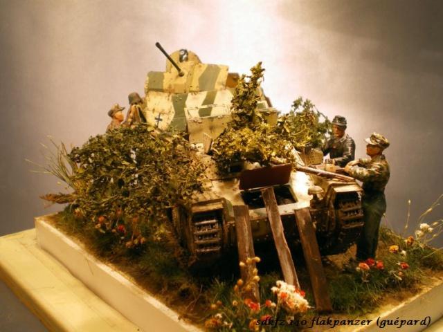 sd.kfz 140 flakpanzer (gépard) maquette Tristar 1/35 - Page 3 958523IMGP3251