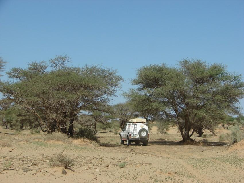 retour maroc 2012 - Page 2 965825069