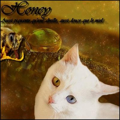 Baptême Icy-Honey / Perl-Waterey / Ice 9669101355681381honeybystacydd4i43n8copie