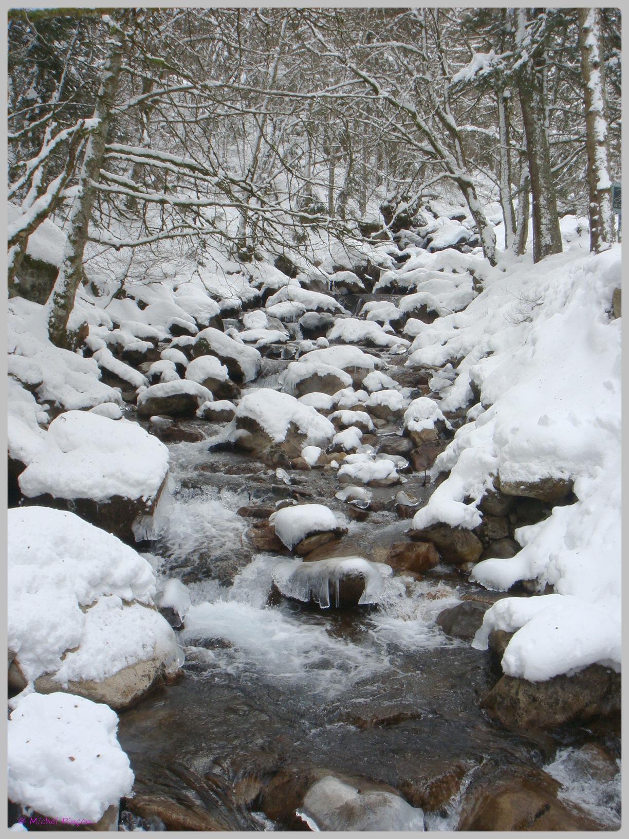 Une semaine à la Neige dans les Htes Pyrénées - Page 2 967598DSC011871