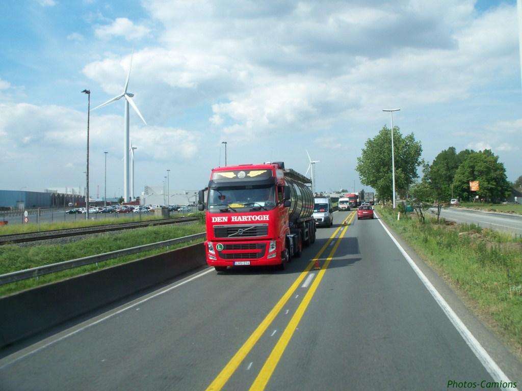 Den Hartogh (Rozenburg) 968123photoscamions14V1158