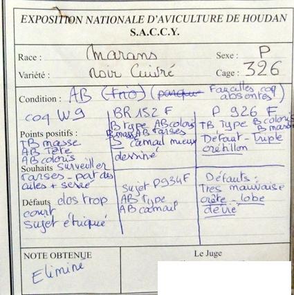 exposition d'aviculture Foire ST MATTHIEU 27 et 28 Septembre 2014 - Page 3 968486P1150799