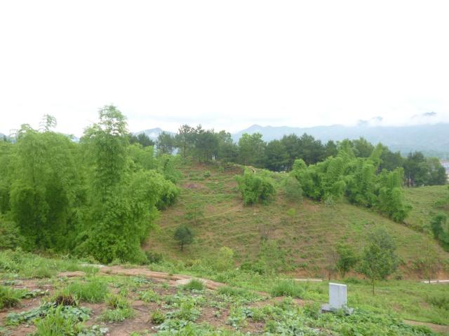 Tourisme historique à Dien Bien Phu 974752P1030740