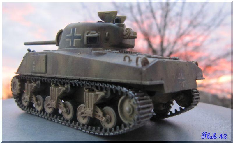 Beutepanzer Sherman M4A2 - Dragon - 1/72ème  980207termin6