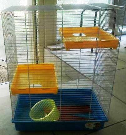 Besoin de vos avis pour une cage. 980227cage