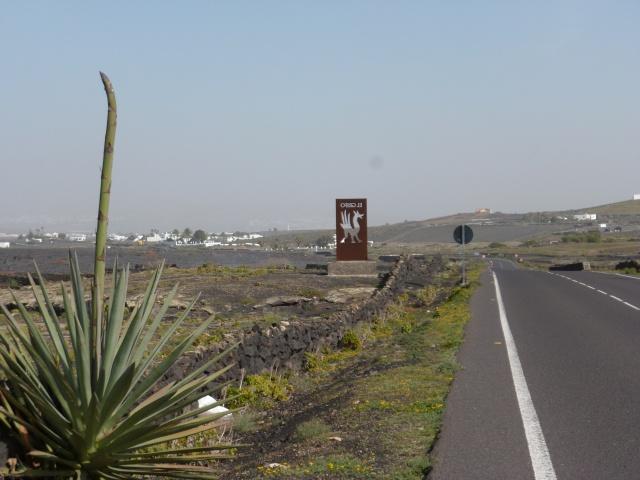 Lanzarote, l'île esthétique 982348P1030865
