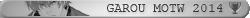 Palmarès événements Retro-Fighters 982906garouargent