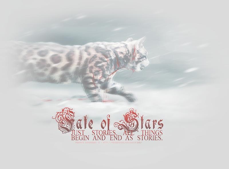 Fate of Stars
