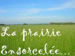 La Prairie Ensorcelée...