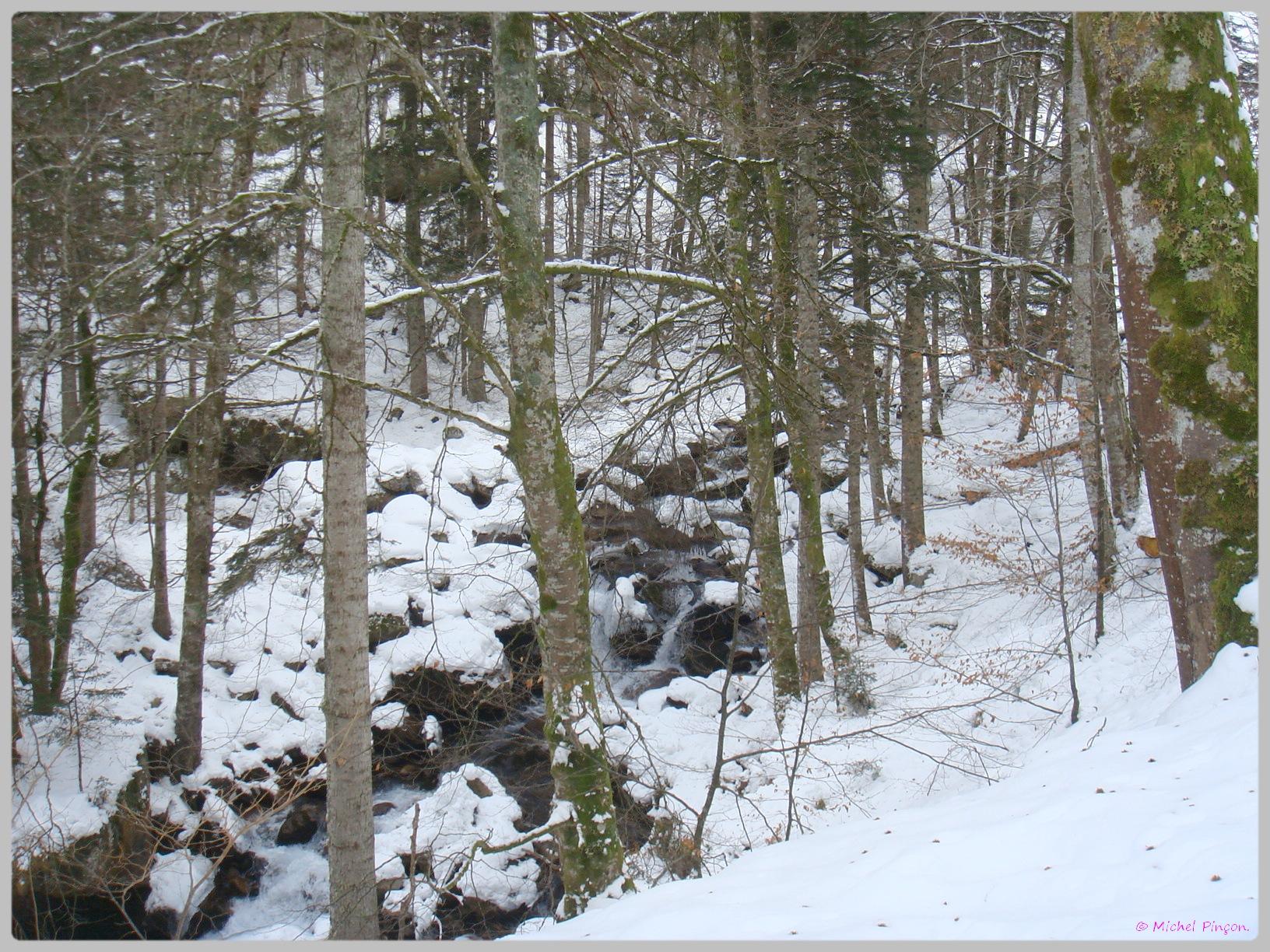 Une semaine à la Neige dans les Htes Pyrénées - Page 2 987521DSC011864