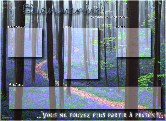 Ma galerie - Page 4 990019FicherereliaCE