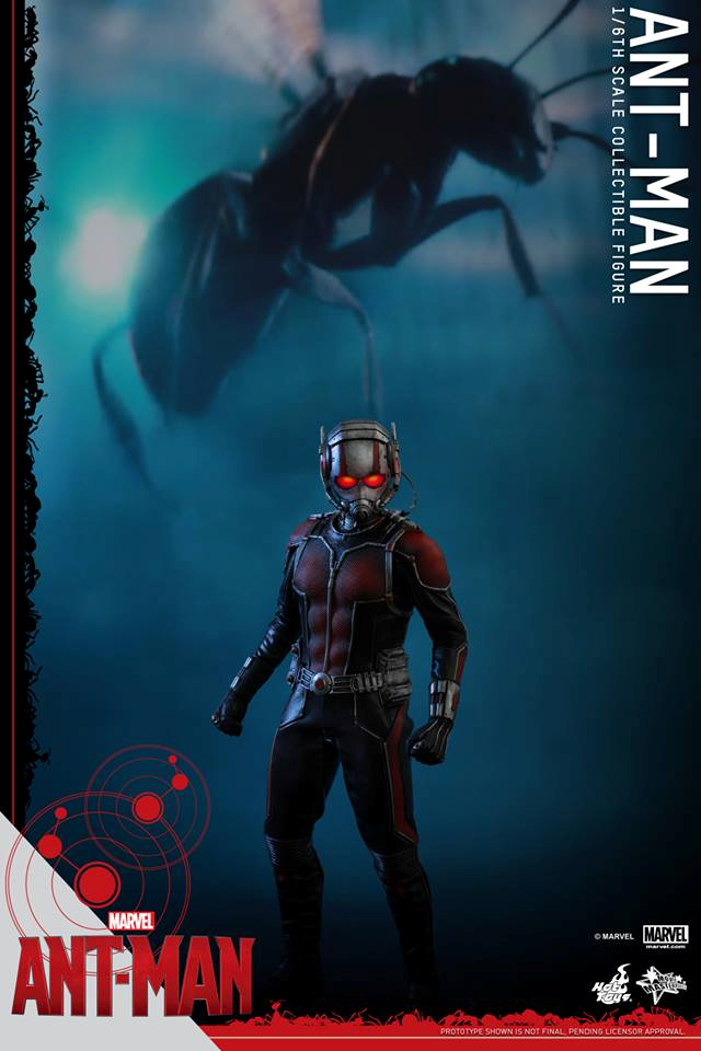 HOT TOYS - Ant-Man - Ant-Man 990621102