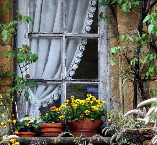 Des fenêtres d'hier et d'aujourd'hui. 9937374313813174742983104421820710255n