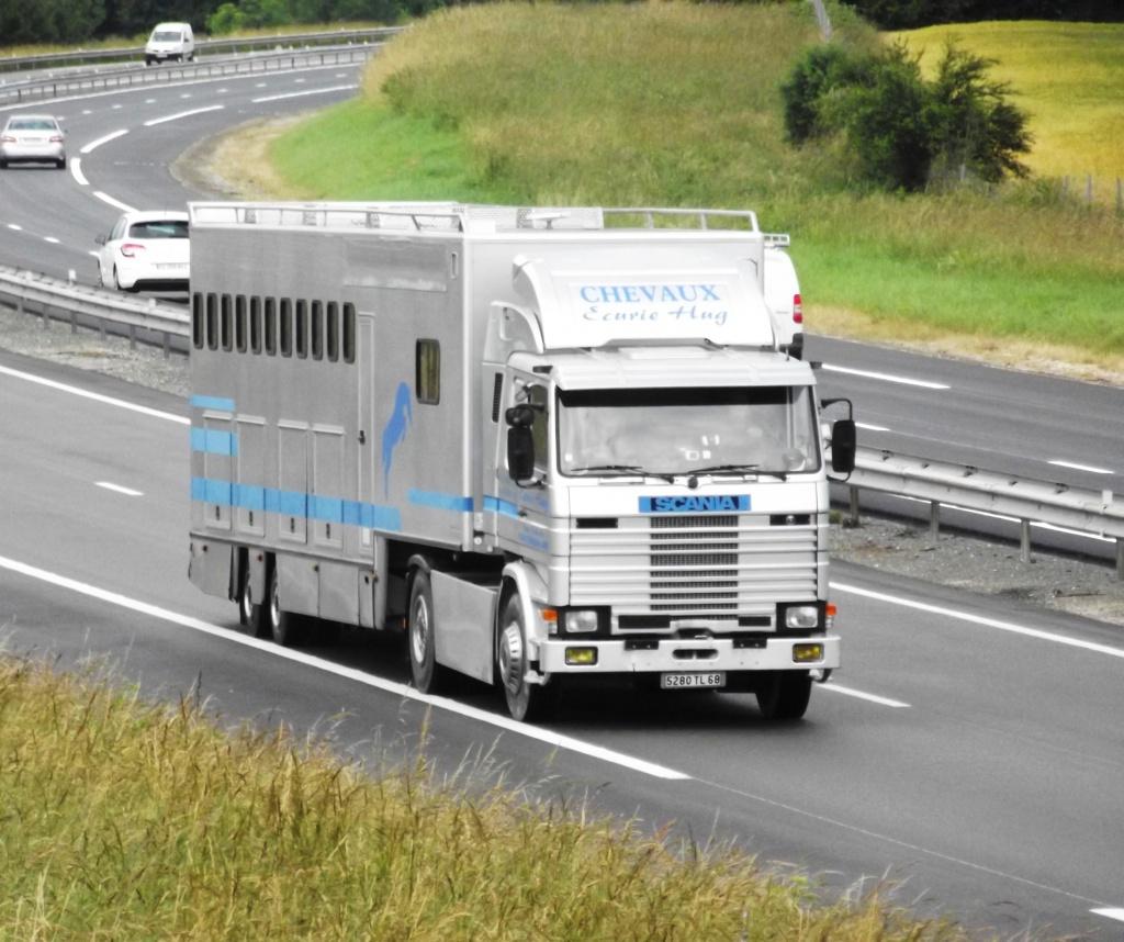 Transports de chevaux - Page 2 994971photoscamionjuin2013044