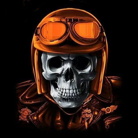 DESSINS - Skulls... 997527tumblrnmuiccadju1sls0ndo1500