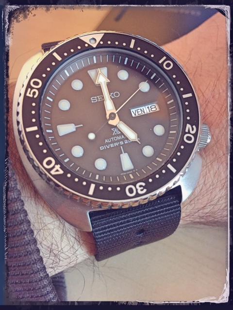 La montre du vendredi, le TGIF watch! - Page 19 999696TurtleSRP77708