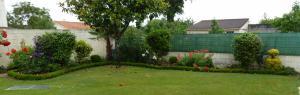 quelques plantouilles au jardin... Mini_117837331
