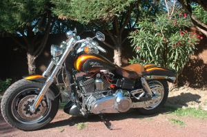 DYNA FAT-BOB, combien sommes-nous sur Passion-Harley - Page 25 Mini_210482DSC00042