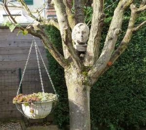 Ce 5 novembre au jardin... Mini_23282276o