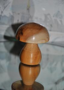 Modestes réalisations de papynounours Mini_238661DSC0013