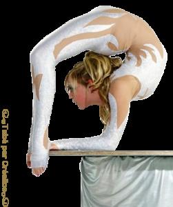 Gym-Acrobatie Mini_361582WestCoastContortion