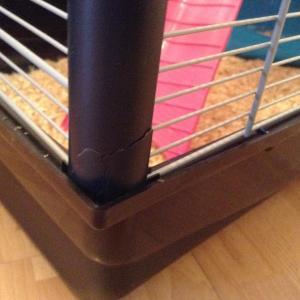 Cage Zeno 2 PROBLEME Mini_41612711026388102061895268834081419767621n