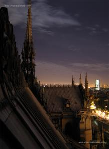 Les toits de Paris Mini_4457209704