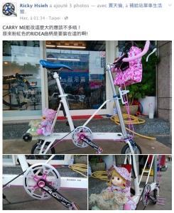 Ridea Bicycle Components - Page 2 Mini_594334PhotoRidea18