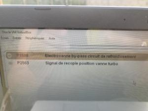 problèmes électroniques divers 2l hdi 136 Mini_603936121