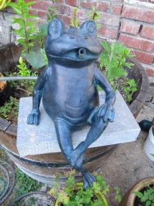 grenouille et petit bassin  Mini_641321IMG4628